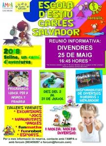 Cartell Carles Salvador 2018